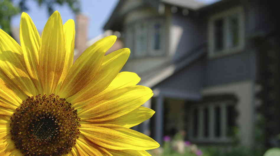 Home Sales Up this Spring